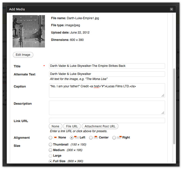 Screenshot Example Showing How to Add HTML to WordPress Image Captions